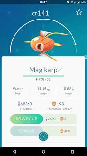 Magikarp di Pokemon GO
