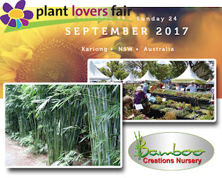 Bamboo creations victoria are attending the kariong plant lovers fair 2017 in new south wales