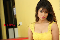 Cute Telugu Actress Shunaya Solanki High Definition Spicy Pos in Yellow Top and Skirt  0566.JPG