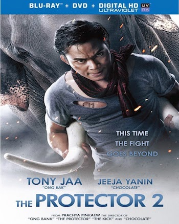 The Protector 2 2013 Hindi Dubbed BluRay Download