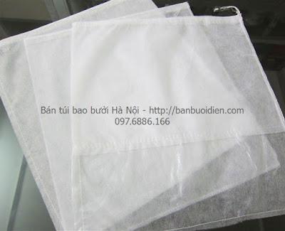 Túi bao bọc trái bưởi tại Hà Nội