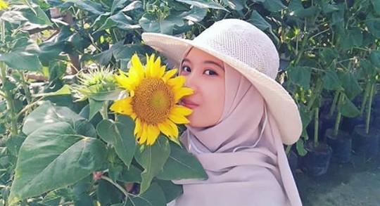 alamat taman bunga matahari magelang
