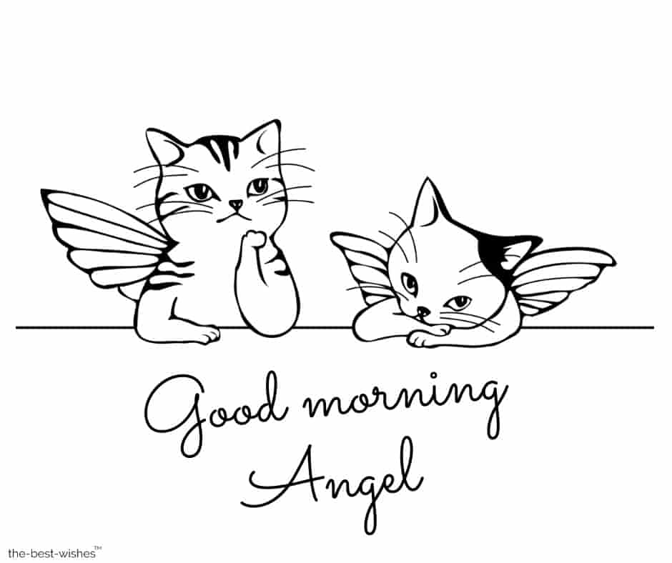 good morning angel with cute cats pic