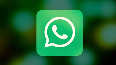 cara disable auto download di whatsapp