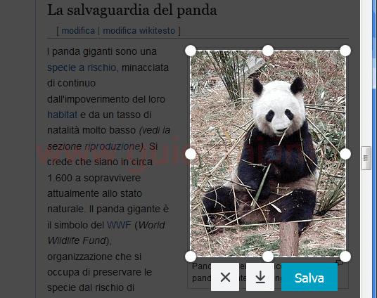 Firefox cattura screenshot con selezione manuale porzione immagine