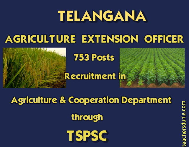 Agriculture-Extension-Officer-Recruitment-In-Agriculture-Department-Through-TSPSC-2017