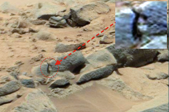 mars rover discovery revealed - photo #14