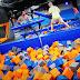 Summit Trampoline Parks anuncia que planea abrir dos parques de trampolines en Santiago de Chile