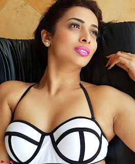 Heena Panchal in Bikini Portfolio Stunning Indian Actress Beauty ~ Exclusive Galleries