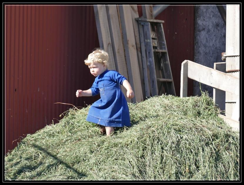 Barefoot Amish Girl