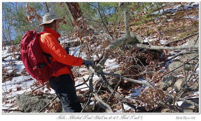 Fells: Blocked Trail. Shall we do it? Need I ask?