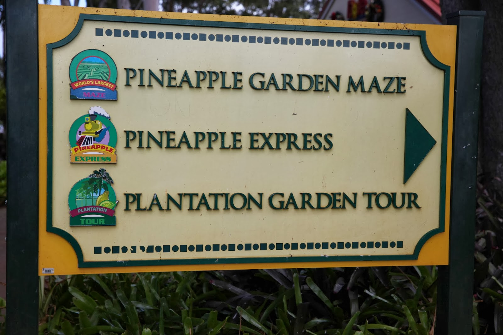 It S Fun 4 Me Oahu Hawaii Dole Plantation