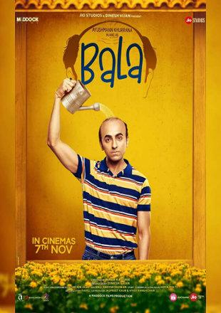 Bala 2019 Full Hindi Movie Download HDRip 720p