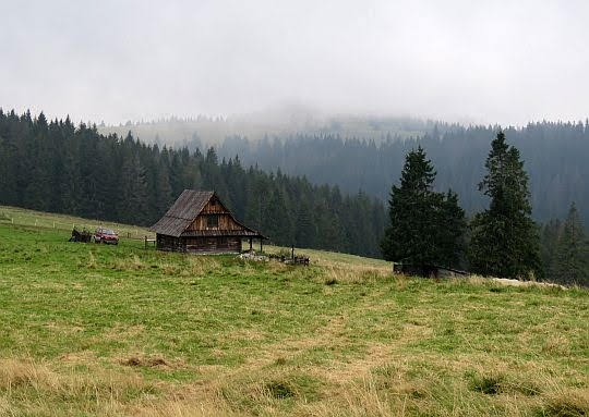 Bacówka na Hali Wzorowej.