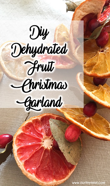 diy dehydrated fruit christmas garland