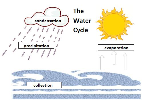 Water Cycle Diagram Blank Daewoo Lanos Wiring Coloring Pages For - Best Collections