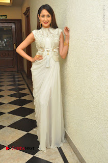 Actress Pragya Jaiswal Stills in Beautiful White Dress at turodu Audio Launch  0050.JPG