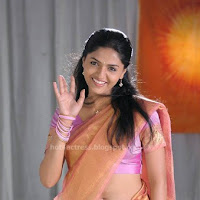 Sunaina hot  saree