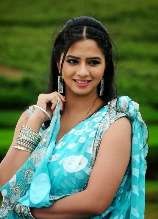Nisha Shah Actress Tamil Latest Photos Saree - SHINER PHOTOS