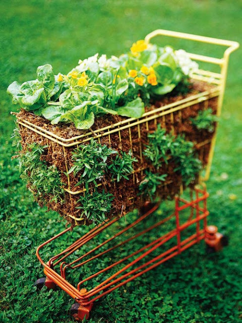 This mini grocery cart is a great place to plant flowers.