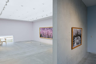 Salas Museo Kawagoe
