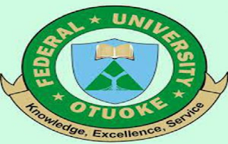 Chief Security Officer at Federal University Otuoke