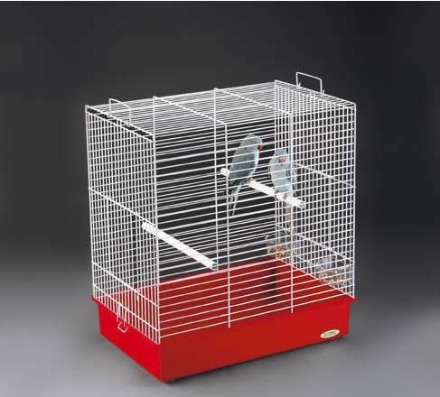 Cockatiel Bird Cages - How To Choose The Right Cockatiel Bird Cages | Bird Care