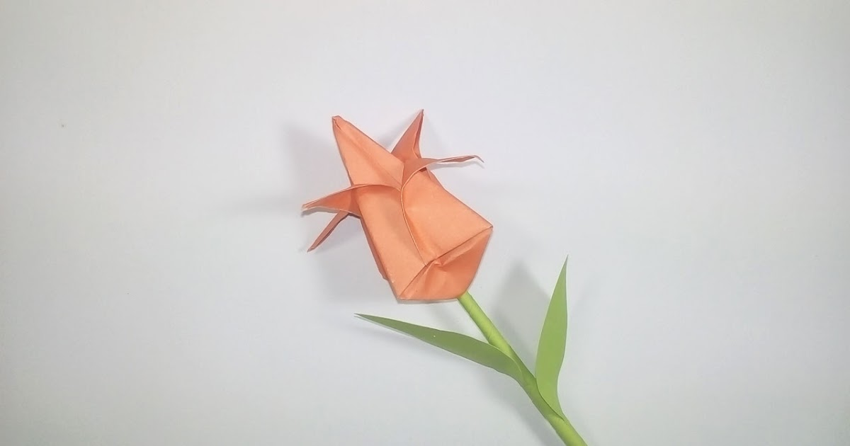 Origami Flower: Easy Tutorial for Beginners (Tulip) - Step by Step ... | 630x1200