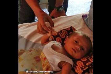 Dikira Meninggal Saat Tsunami Palu, Bayi 2 Bulan di Temukan Masih Hidup Diatas Pohon