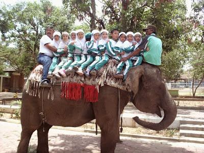 akcayatour, Kebun Binatang Tinjomoyo, Travel Malang Semarang, Travel Semarang Malang, Wisata Semarang