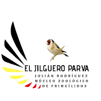 Aviario El jilguero Parva