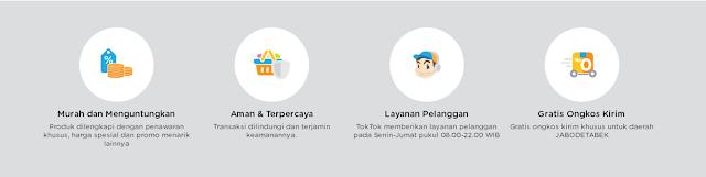 TokTok, Toko Online Khusus PNS