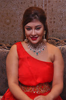 Payal Ghosh Looks Stunning in Red Half Shoulder Gown 015.JPG