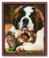 Песик и котята