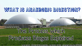 What is anaerobic digestion thumb