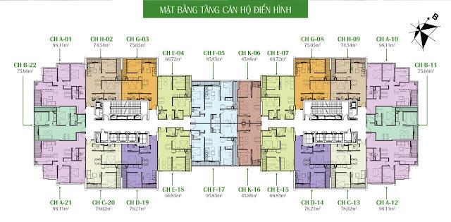 Mặt bằng căn hộ chi tiết chung cư Eco Dream City
