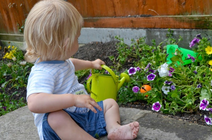 get kids gardening, toddler gardening, the mummy adventure, plant me now