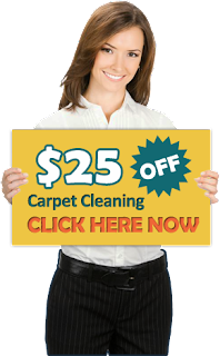 http://carpetcleaningofkaty.com/cleaning-services/special-offer-details.jpg