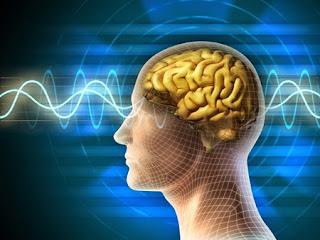 brainwave 腦波攻擊