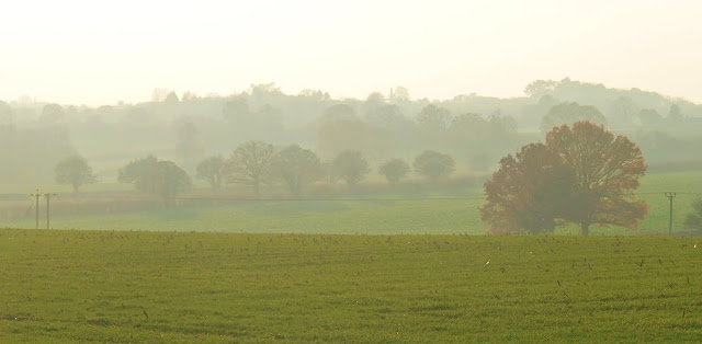 Misty fields and autumnal hues near Charlcut, Wiltshire