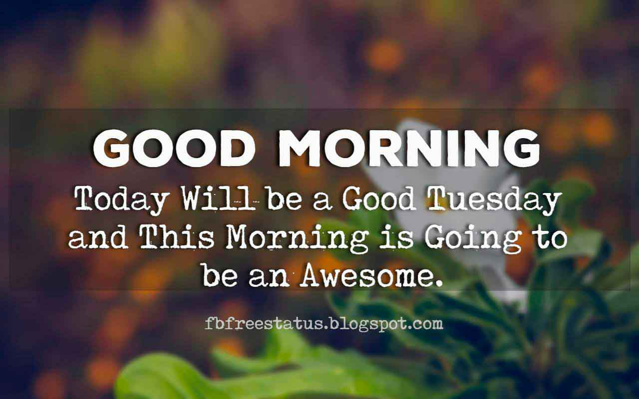 Good Morning Tuesday, Today will be a good Tuesday and this morning is going to be an awesome.