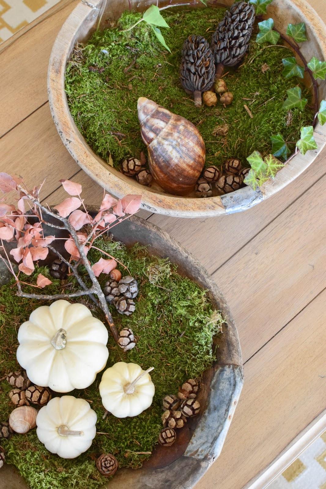 Dekoideen mit Kürbis für den Herbst. Kürbisse natürlich dekorieren. Tischdeko, Tisch dekorieren Herbstdeko, herbstliche Deko, Stilleben
