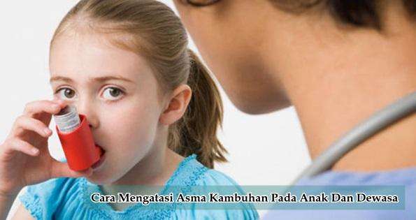Obat Asma Kambuhan Untuk Anak Dan Dewasa Terbukti Ampuh