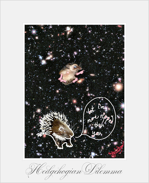 Hedgehog and porcupine in space rip