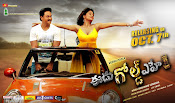 Sunil's eedu gold ehe movie wallpapers-thumbnail-4