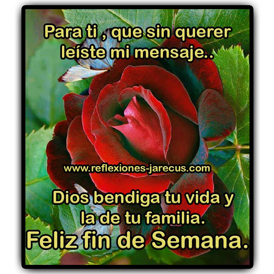 Para ti, que sin querer leíste mi mensaje... Dios bendiga tu vida y la de familia. Feliz fin de semana