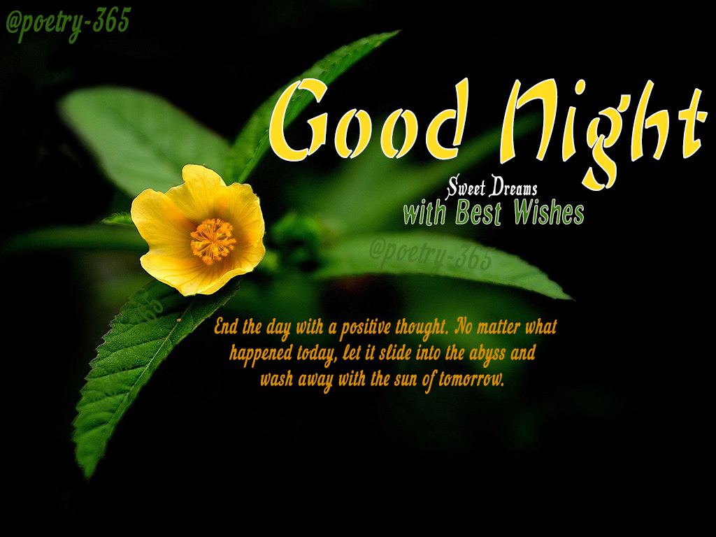 Wishes And Poetry Good Night Quotes Sweet Dreams With