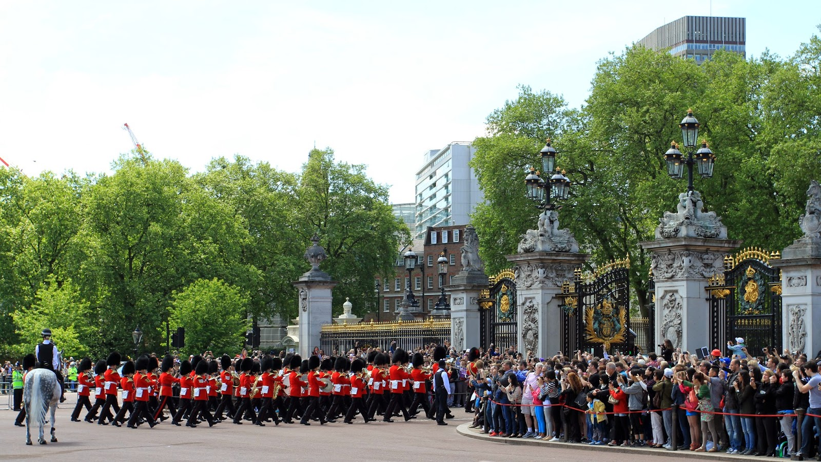 Here against chubby buckingham guard removed