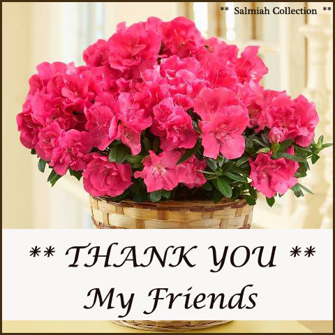 Thank You My Friends