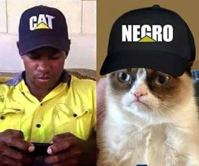 hombre negro con gorra que dice CAT gato gruñón con gorra que dice NeGRO